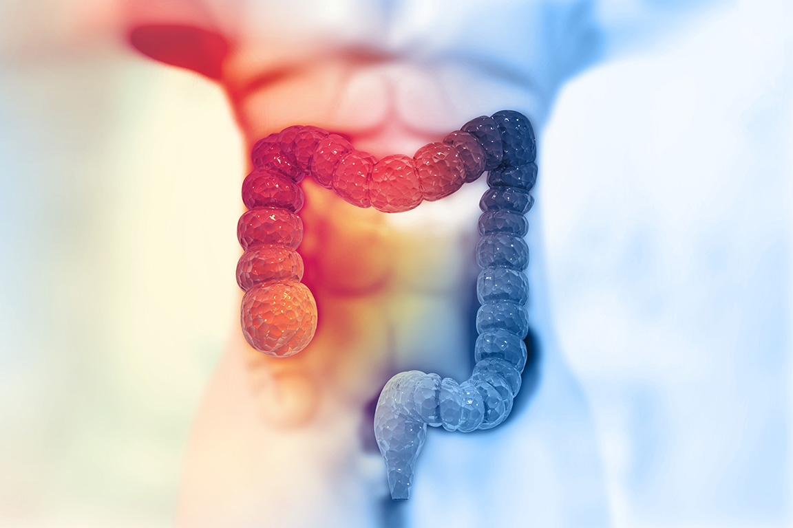 Human colon on scientific background